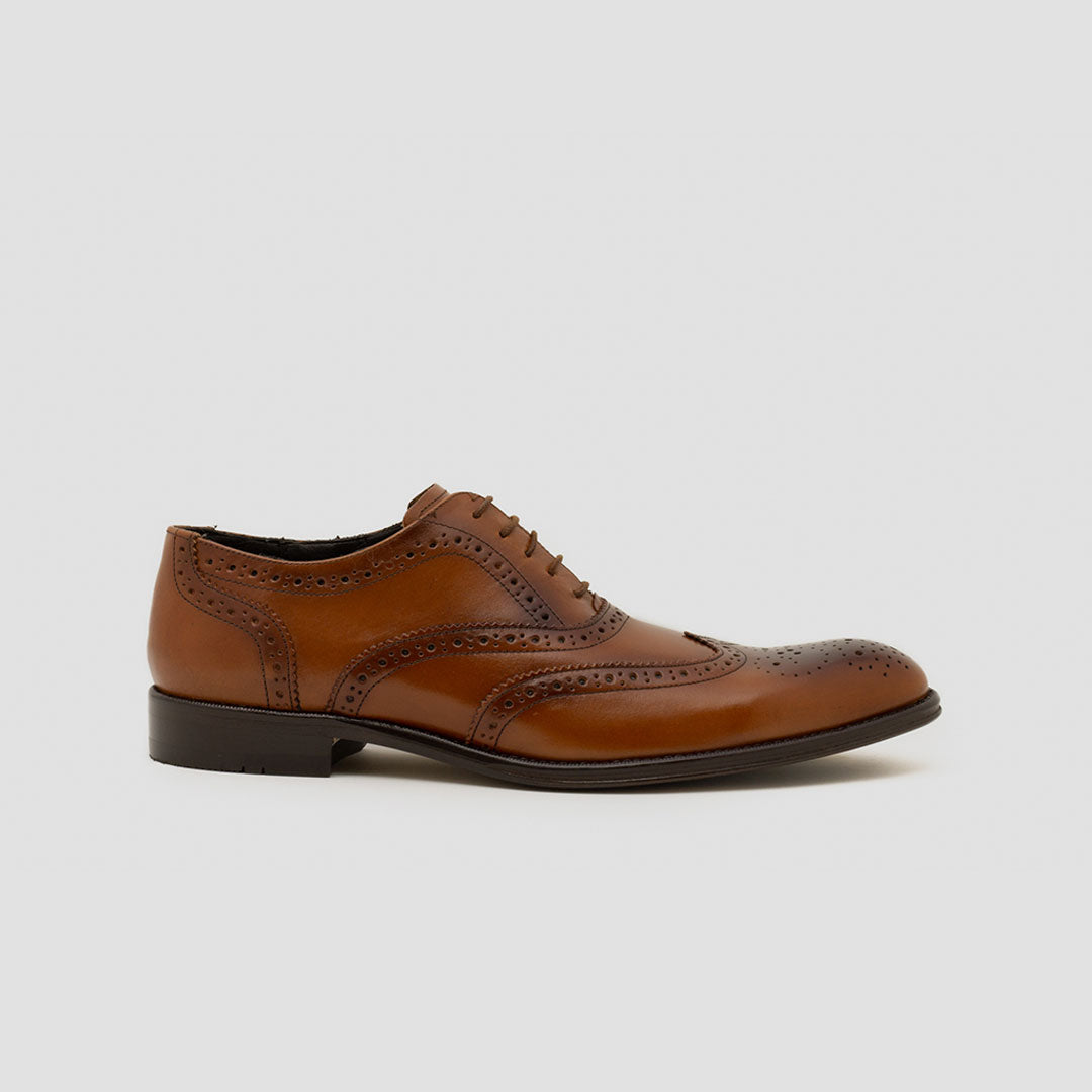 Oxford full brogue Premium | mod. 5031 (Negro, Café, Miel)