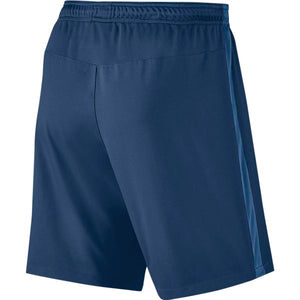 Men's Nike Dry Squad Shorts.      807682-423