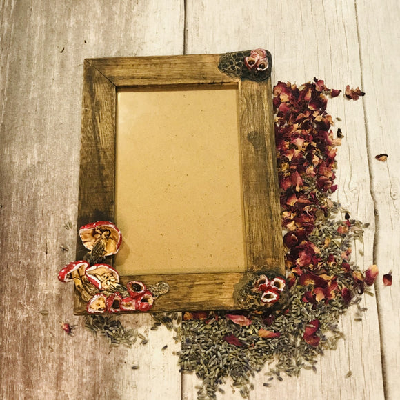 Red Mushroom Inspired Picture Frame
