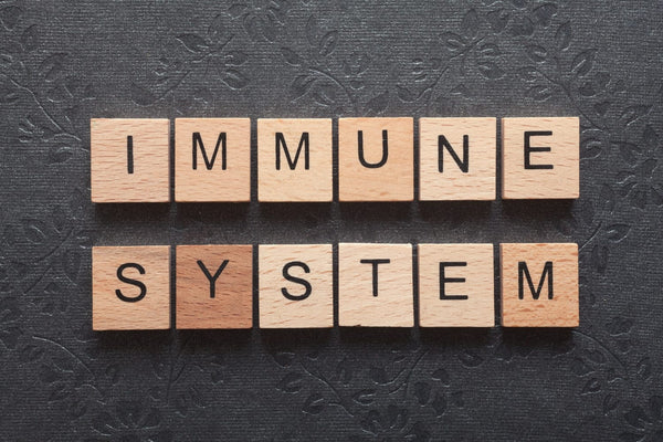 Here Are the Top Ways You Can Boost Your Immune System