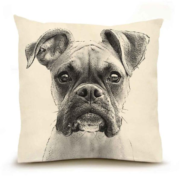 Eric & Christopher Boxer Pillow