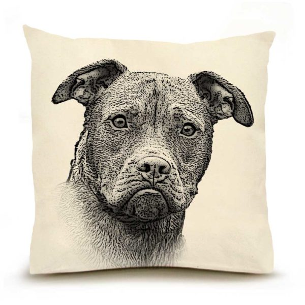 Eric & Christopher Pitbull Pillow