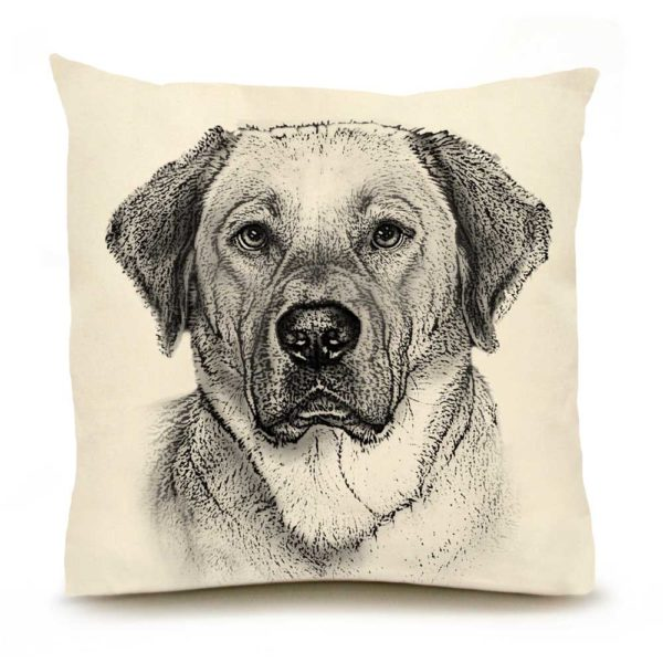 Eric & Christopher Yellow Lab #2 Pillow