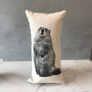 Groundhog pillow