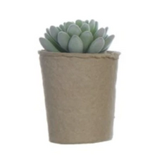 Load image into Gallery viewer, Faux Succulent in Paper Pot
