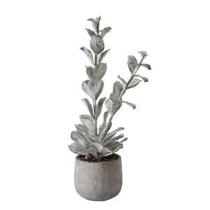 Faux Succulent in Cement Pot