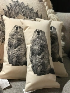 Groundhog pillows