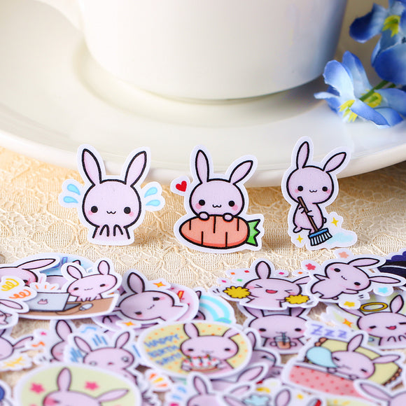 40pcs rabbit