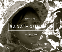 May: Bada Mountain Sheng 2015