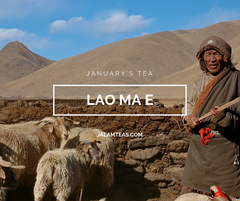 January: Lao Ma 'E Tea Sheng