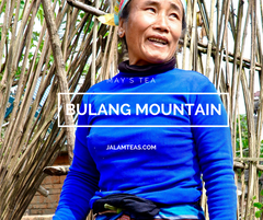 May: Bulang Mountain Sheng