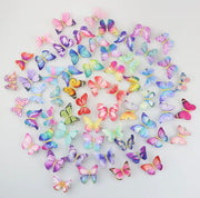 R & L Butterfly Hair Clips