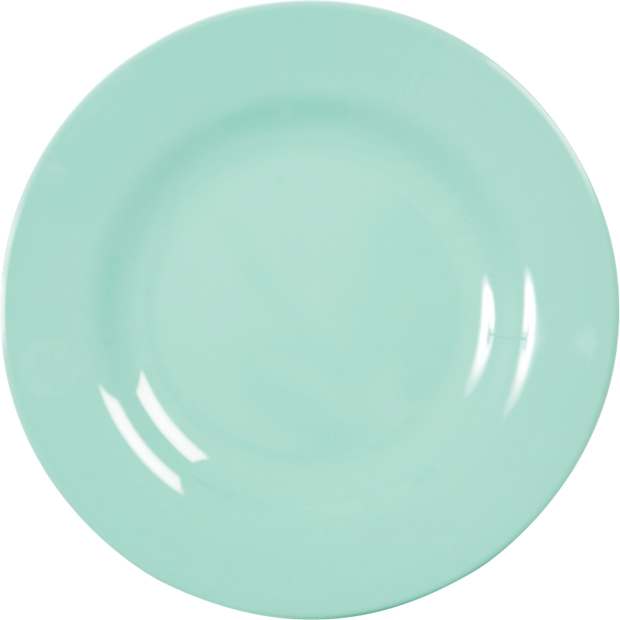 Assorted Colour Melamine Dinner Plates