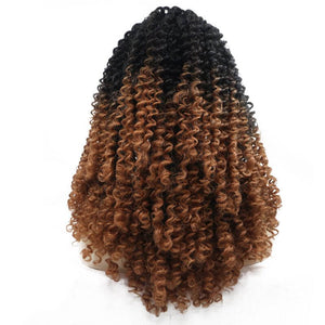 ITYMAHAIR Black to Brown Ombre Curly Synthetic Lace Front Wig-IACURLY02-03