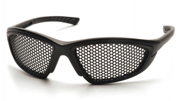 Steel Mesh Lenses with Black Frame