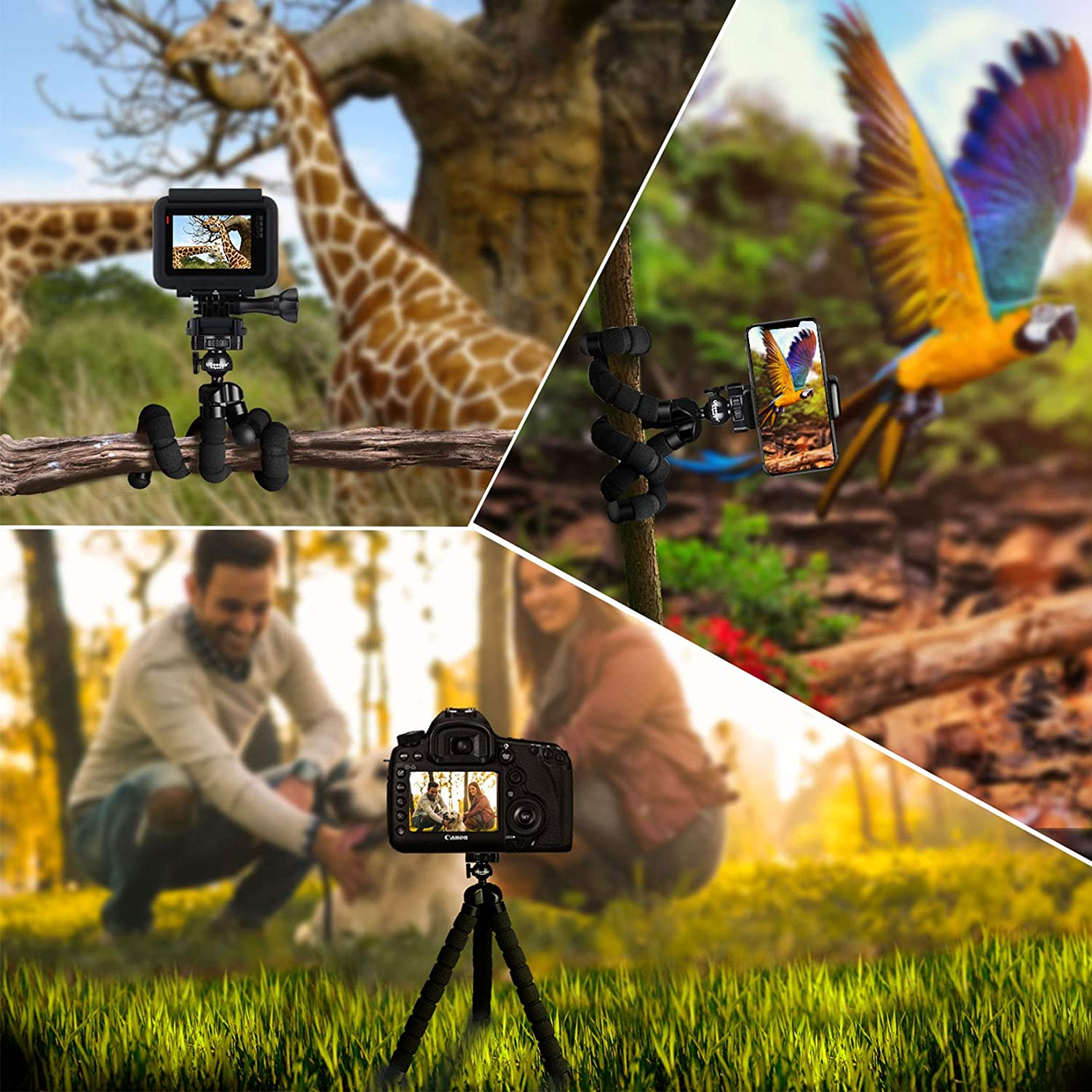 Tripod Phone & Camera Aura Life Shop
