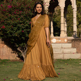 Brown embroidered dress & dupatta