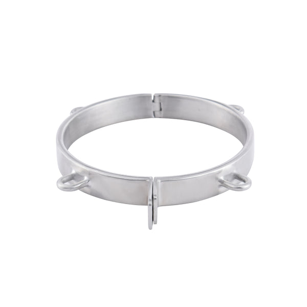 Stainless Steel Padlock Collar with 4 Attached Ring