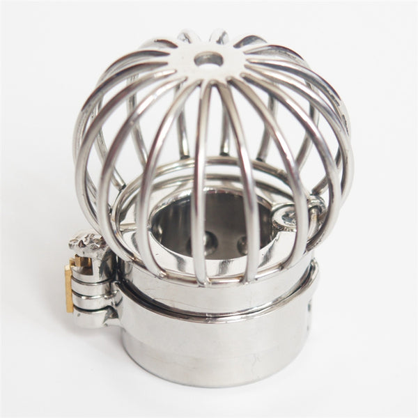 Stainless Steel Testicles Restraints Male Scrotum Ring Ball Stretchers Spikes Weights Scrotum Pendant Cock Bondage Stealth Lock Device