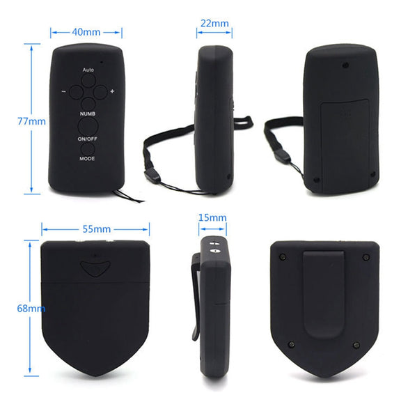 Wireless Remote Control Electric Shock Host Double Output Electro Control Host