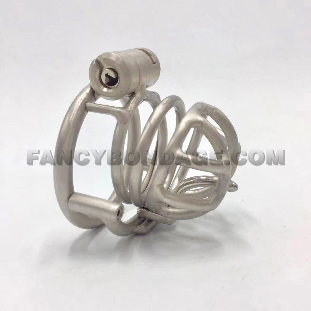 *Handmade Customize* Chastity Cage with Prince Albert Penis Piercing Hook T08