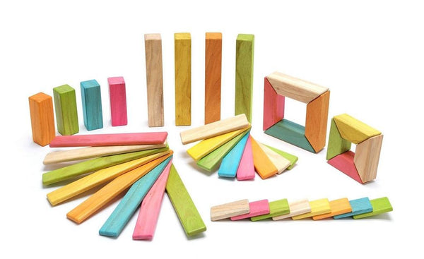 TEGU Explorer Set in Tegu Tints (40pcs)