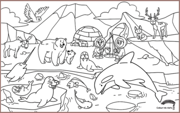 COLOUR ME MATS Arctic Expedition (Colouring Mat only)