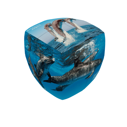 V-CUBE Dolphins 2 Pillow