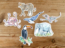 Load image into Gallery viewer, Stickers! - toucan, octopus, leopard, blue whale, gecko, elephant