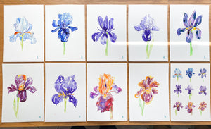 'A Bunch of Irises' - set of 9 greetings cards