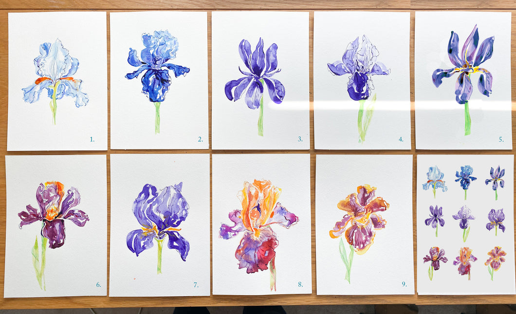 'A Bunch of Irises' - pick your own set of 4 greetings cards