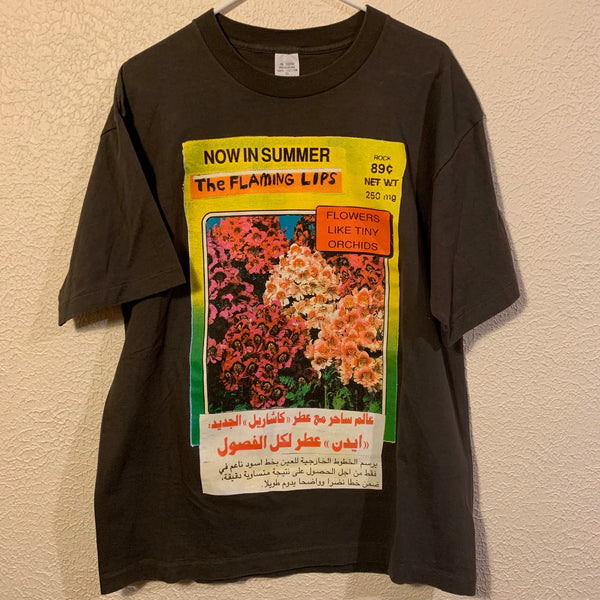 Vintage 90's Flaming Lips Now In Summer T Shirt