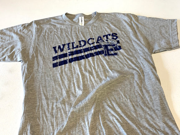 Distressed Enterprise Wildcat Tee