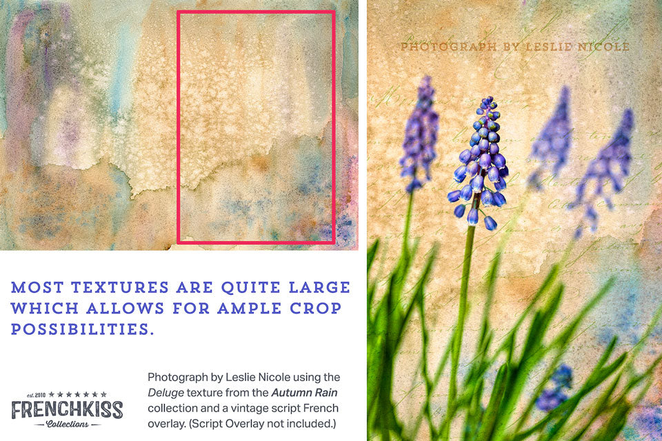 Example using a watercolor texture on a photograph of Muscari flowers.