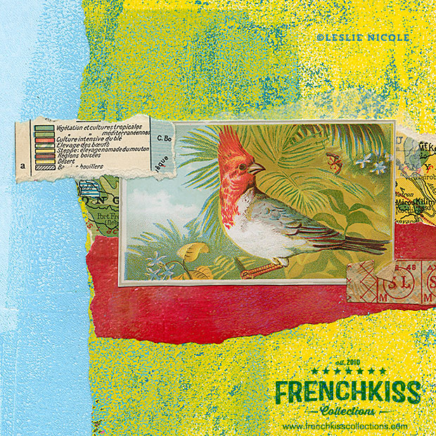 Collage example using the Vintage Birds No. 4 Victorian Trade Card digital download.