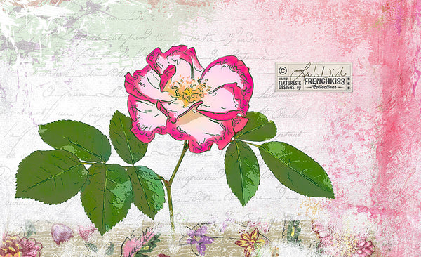 Rose digital collage by Leslie Nicole