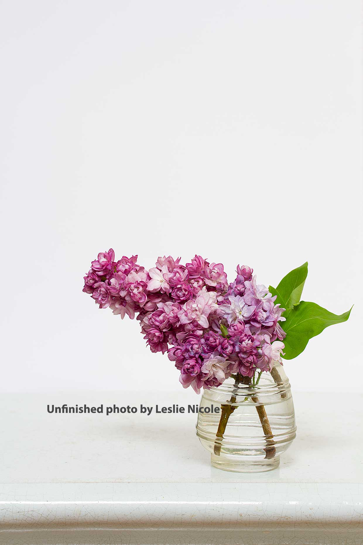 Original photo of Lilac floral before post-processing.