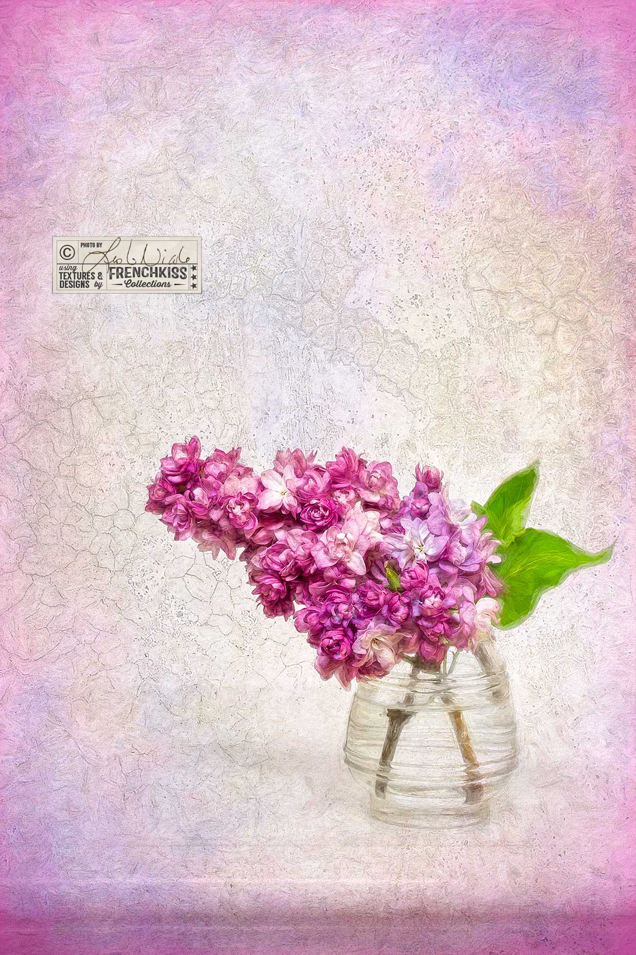 Photograph of Lilac by Leslie Nicole with textures by French Kiss Collections.