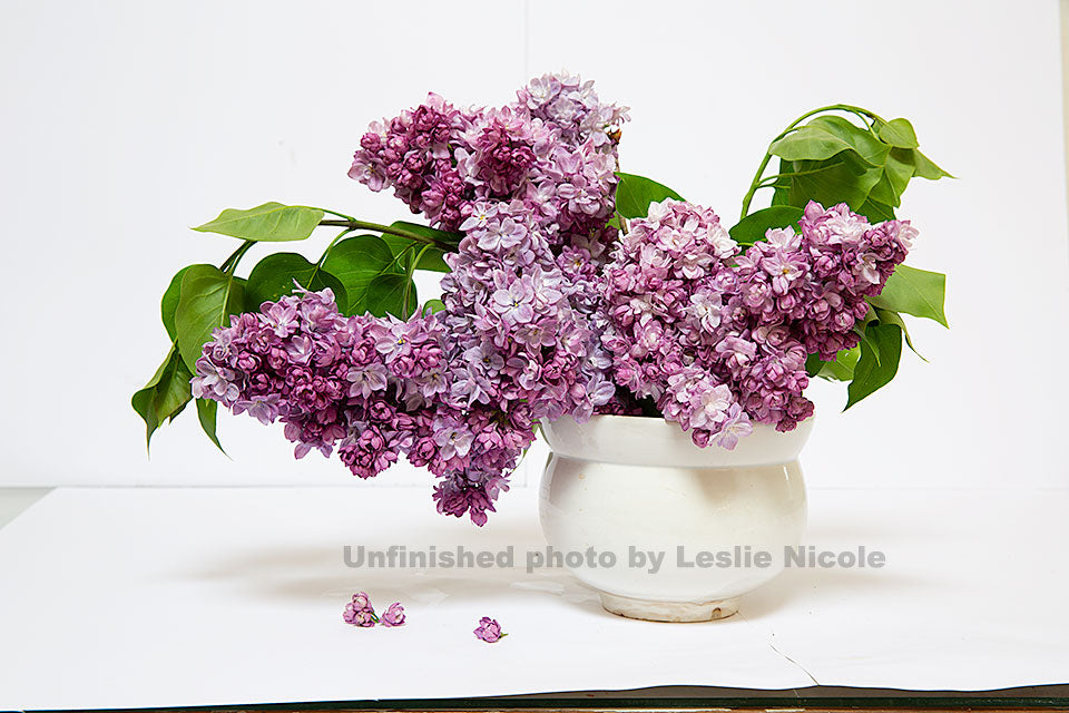 Lilac still life by Leslie Nicole before processing and textures.