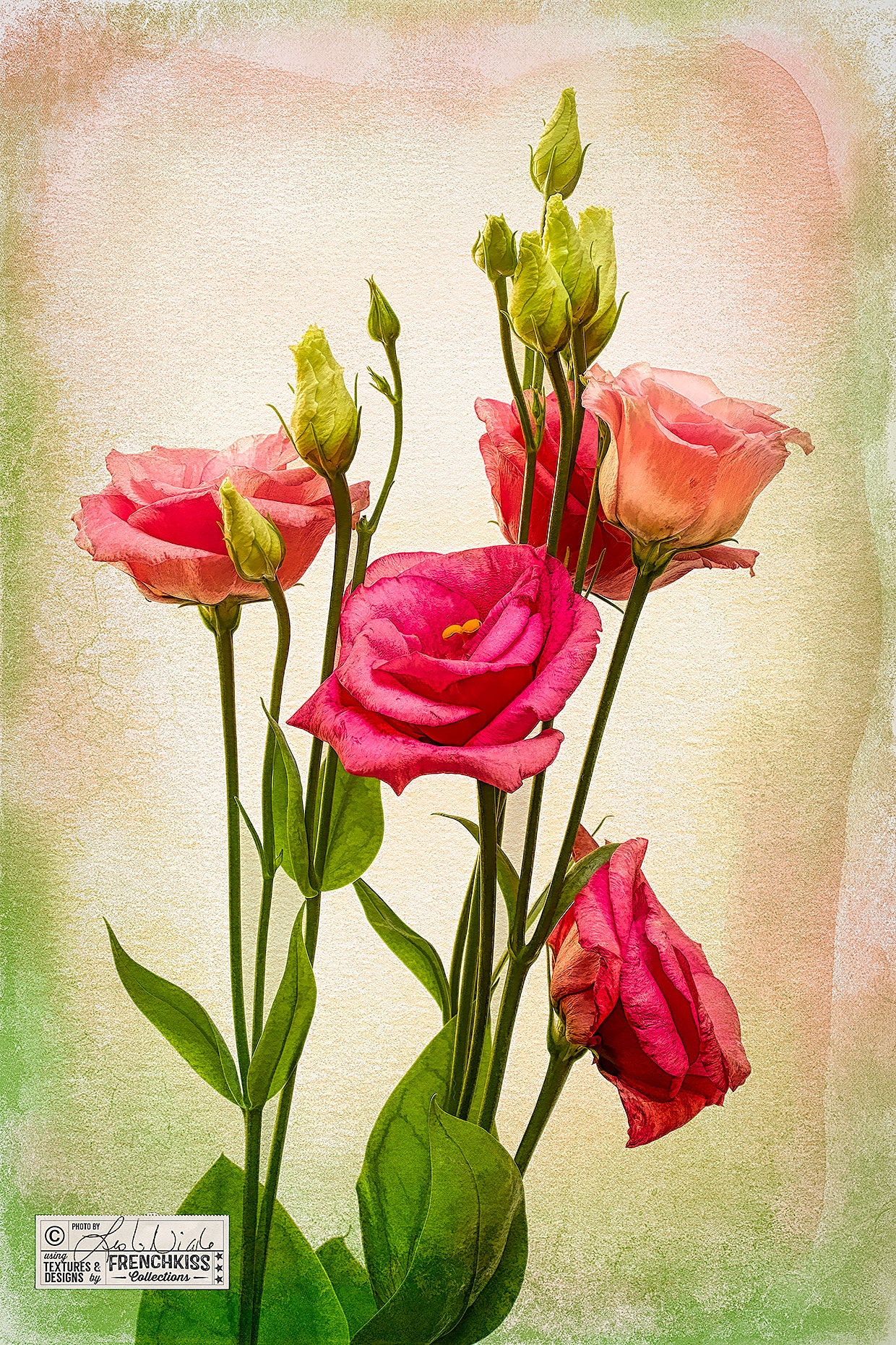Lisianthus flowers photograph with textures and Topaz Labs filters for an artistic look.