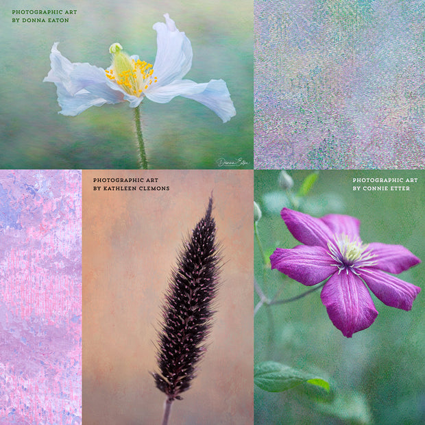 Examples using the Virtuoso Painterly fine art texture collection.