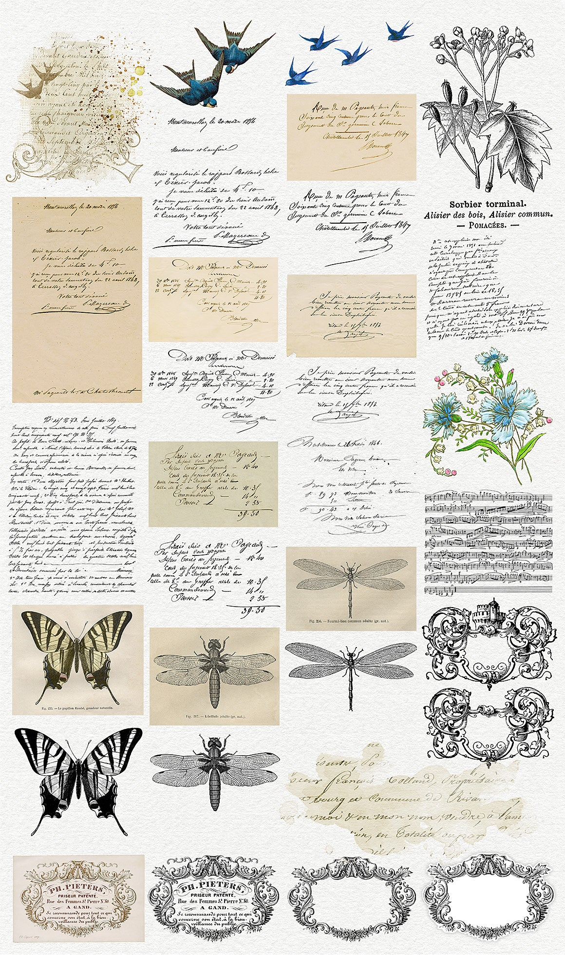 Oh, So Vintage! Vintage French ephemera and overlays. Script, illustrations and decorative elments. Section 3