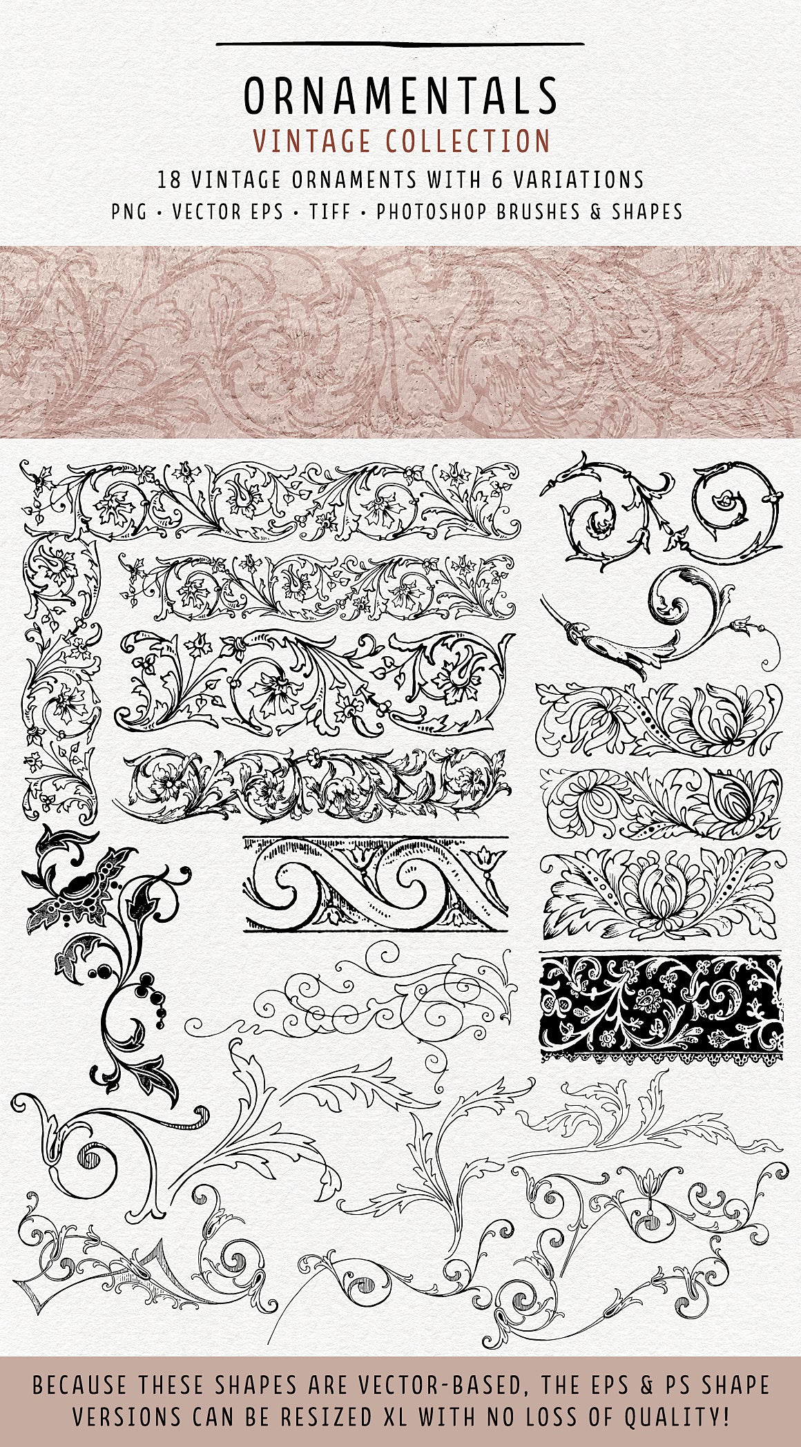 Vintage Ornamentals flourishes and florals overlays, vector, and brushes.