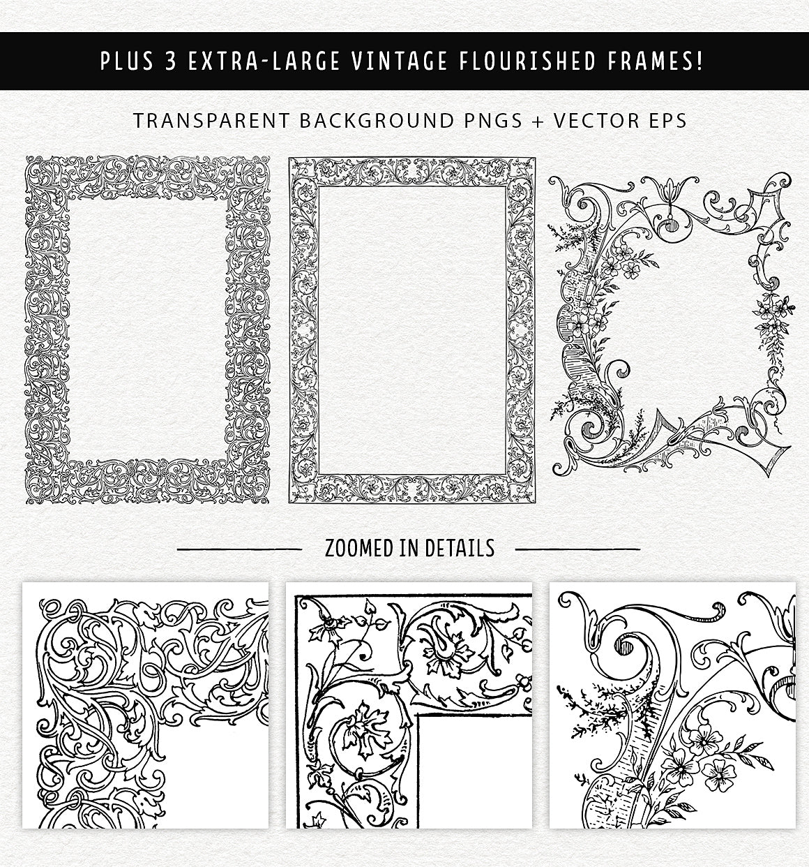 Large vintage flourish frames or border overlays and vector graphics.