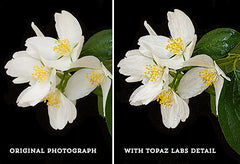 Side by side comparison before and after the Topaz Labs Detail filter.