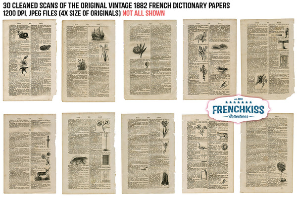 Vintage Papers from a vintage 1882 French dictionary with illustrations.