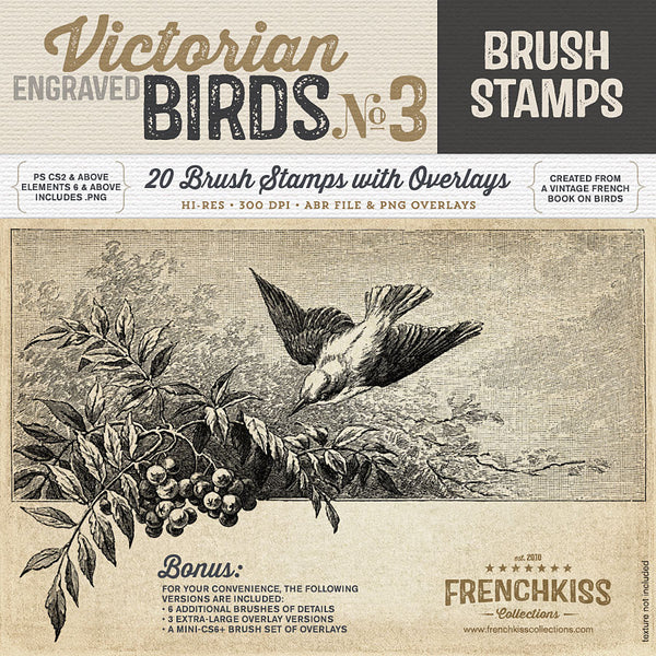 Victorian Engraved Bird Brush Stamps No.3