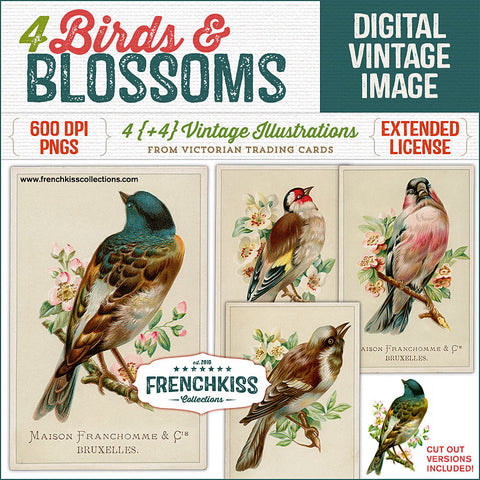 Four birds & blossoms digital vintage images at French Kiss Collections.