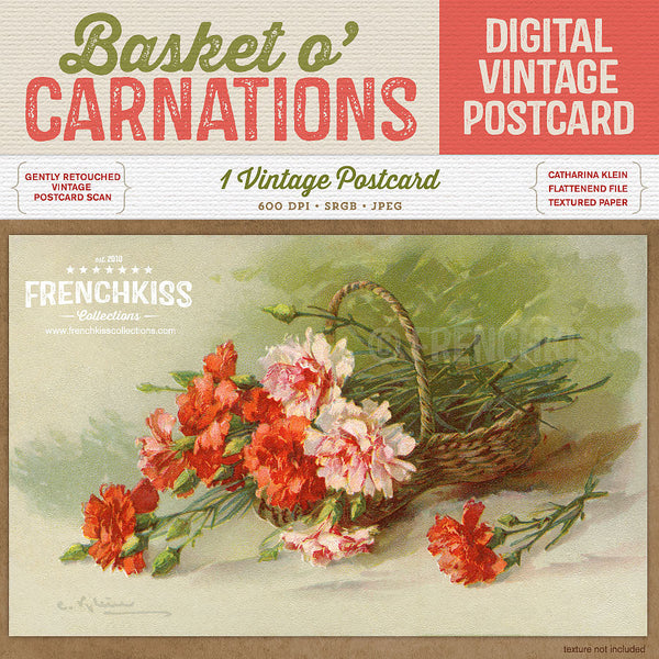 Klein Basket O Carnations Digital Vintage Postcard