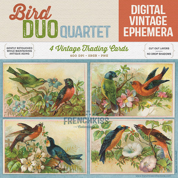 Bird Duo Quartet